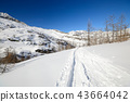 Exploring the Alps by tour skiing 43664042