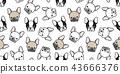 Dog seamless pattern french bulldog pug vector 43666376