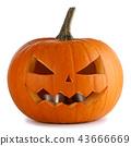 pumpkin, halloween, lantern 43666669