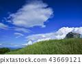 여름 구름, 뭉게구름, 여름 43669121