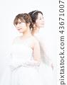 新娘 婚礼 新娘图 43671007