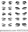 Male and female eyes eyebrows vector elements 43672919