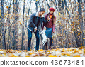 Couple in fall having walk with dog in a park 43673484
