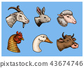 Farm animals. Head of a domestic pig goat cow rabbit sheep. Logos or emblems for signboard. Set of 43674746