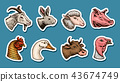 Farm animals. Head of a domestic horse pig goat cow alpaca llama rabbit sheep. Logos or emblems for 43674749