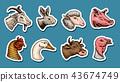 Farm animals. Head of a domestic horse pig goat cow alpaca llama rabbit sheep. Logos or emblems for 43674749