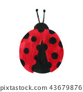 Ladybug Cartoon watercolor collection on white 43679876