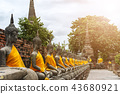 Buddha statues at the temple in Ayutthaya,Thailand 43680921