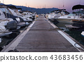 Sea pier with many expensive yachts in the port  43683456