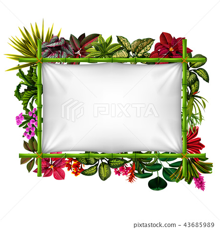 beautiful botanical frame with the bamboo 43685989