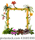 beautiful botanical frame wood with the flower 43685990