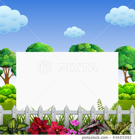 beuatiful nature frame with the good view 43685992