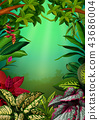 the beautiful walpaper with the aglomena leaves  43686004