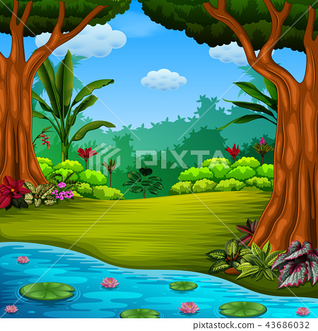 the beautiful forest with the lake and lotus 43686032