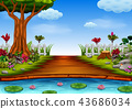 the beautiful forest view with the lake 43686034