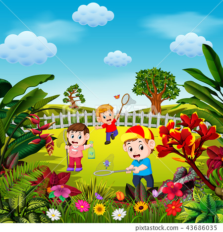 the cute children play to catch the butterfly 43686035