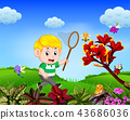 the boy tries to catch a butterfly in the garden 43686036