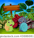the cute snails play in the garden  43686081