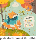 Red fox father and son in autumn forest 43687064