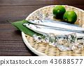 ปลา,วัตถุดิบทำอาหาร,อาหารทะเล 43688577