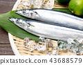 ปลา,วัตถุดิบทำอาหาร,อาหารทะเล 43688579