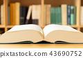 사전, 딕셔너리, 책장 43690752