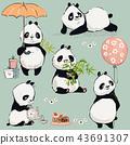 panda little bear 43691307