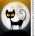 cat on spooky orange background with full moon 43694484