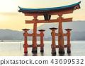 미야지마, 이츠쿠시마 신사, 오오토리이 43699532