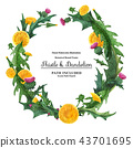 Wreaths from thistle and dandelion for decoration 43701695