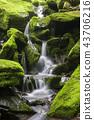강원도,한국,상동,이끼계곡 43706216