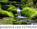 강원도,한국,상동,이끼계곡 43706266