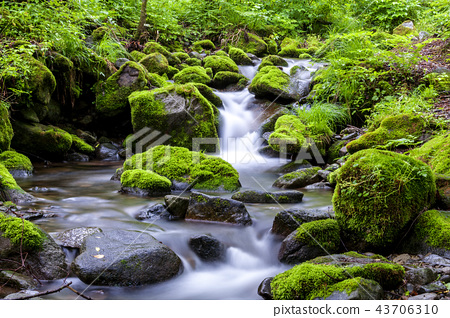 Gangwon Province, Korea, Sangdong, Moss Valley 43706310