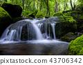 강원도,한국,상동,이끼계곡 43706342