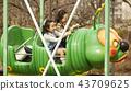 在游乐园里玩的家庭 43709625