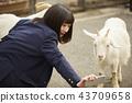 高中女生在動物園玩 43709658