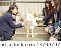 高中女孩在遊樂園裡玩 43709797