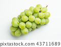 shine muscat, agricultural products, fruit 43711689