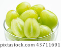 shine muscat, agricultural products, fruit 43711691
