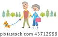 年長人狗步行例證 43712999