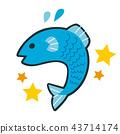 星座 雙魚座 魚 43714174