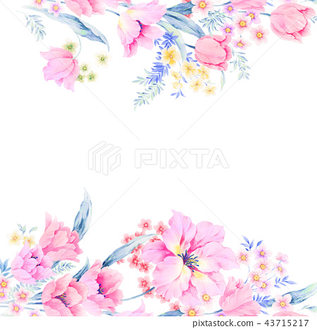 優雅的水彩玫瑰花插畫 43715217