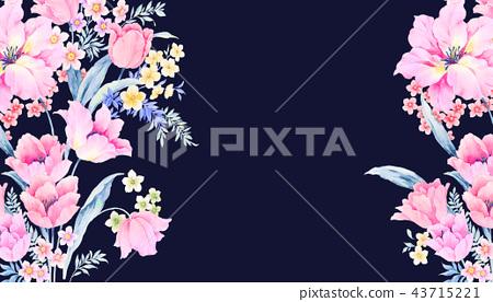 優雅的水彩玫瑰花插畫 43715221