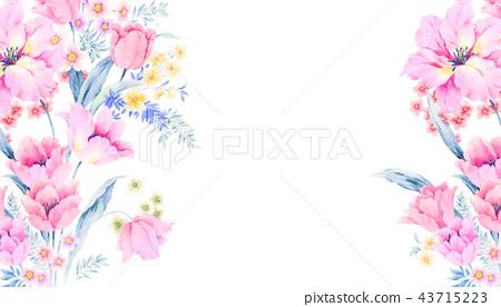 優雅的水彩玫瑰花插畫 43715223