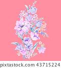 优雅的水彩玫瑰花插画 43715224