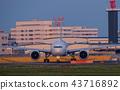 air, plane, airplane 43716892