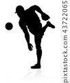 Baseball Player Silhouette  43722065