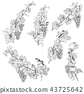 Hand Drawn Goldfinch on Grape Branches Sketch 43725642