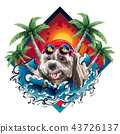 Dog on the beach with coconut tree 43726137