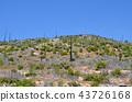 yosemite, yosemite national park, landscape 43726168
